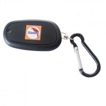 Glasurit LED light for key ring