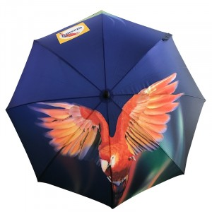 Glasurit umbrella